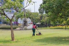 Травокосилка режа зеленую траву работа сада Стоковое Фото