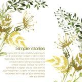 Травы акварели и цветки, предпосылка вектора иллюстрация штока