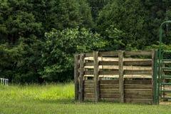 травы загородки фермы золотистые Стоковое Фото