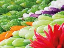 Травы использованы для еды Стоковое Фото