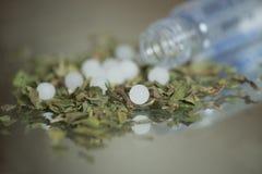 Травы и гомеопатия Стоковая Фотография