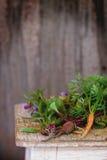 Травы и овощи Стоковые Изображения