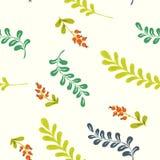 Травы и ягоды леса картина безшовная Стоковое Изображение
