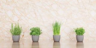 Травы на деревянной иллюстрации стола и мраморных предпосылки 3D иллюстрация штока