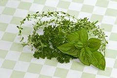Травы на зеленой Checkered предпосылке Стоковые Фотографии RF