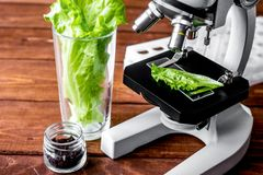 Травы осмотра еды концепции здоровые в лаборатории Стоковые Изображения RF