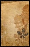 травы предпосылки вертикальные Стоковые Изображения RF