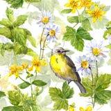 Травы сада, цветки, трава, птица Флористическая повторяя картина акварель Стоковые Изображения RF