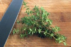 Травы тимиана стоковые фото