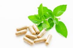 Травяная капсула лекарства Стоковая Фотография RF