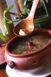 травяная тоника супа Стоковые Фото