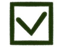 Травянистая контрольная пометка в рамке на белой предпосылке Изолированная цифровая иллюстрация перевод 3d Стоковое Изображение RF