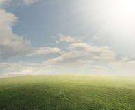 Травянистое поле с ярким солнцем Стоковые Изображения