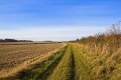 Травянистое bridleway Стоковая Фотография RF