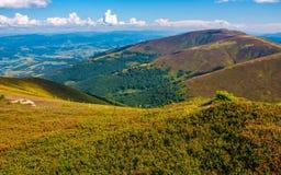 Травянистые наклоны гребня прикарпатской горы Стоковое Изображение RF