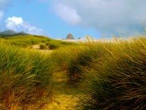 Травянистые песчанные дюны на бечевнике океана с утесом стога сена стоковое фото rf