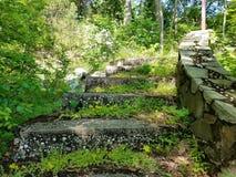 Травянистые руины лестницы стоковые изображения