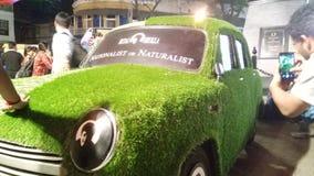 Травянистый автомобиль стоковые фотографии rf