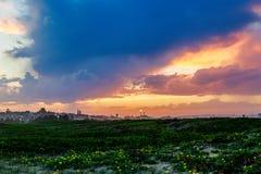Травянистый заход солнца поля Стоковое Фото