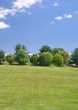 травянистый ландшафт горного склона Стоковое Фото