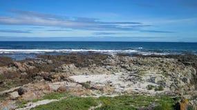 Травянистый скалистый пляж обозревая темносиний океан стоковые фото