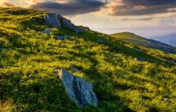 Травянистый луг с валунами на наклоне горы Стоковые Фотографии RF