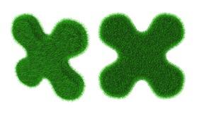 Травянистым объект сформированный цветком Стоковая Фотография RF