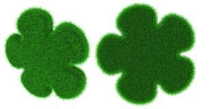 Травянистым объект сформированный цветком Стоковое Фото