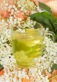 Травяное вливание цветений старейшины или Sambucus Стоковые Фото