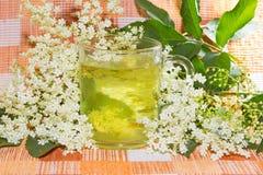 Травяное вливание цветений старейшины или Sambucus Стоковое фото RF