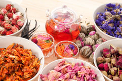 Травяное естественное флористическое вливание чая Стоковое Изображение