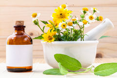 Травяное, масло и полевой цветок альтернативного здравоохранения свежее с m Стоковые Фото