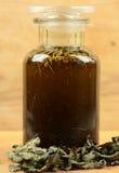 Травяное масло Стоковое Изображение