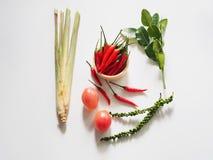 травяное yum tom ингридиентов Стоковое фото RF