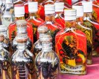 Травяной ликер от скорпиона, змейки и травы выдержанных в спирте Стоковая Фотография RF