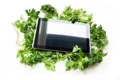 Травяной ПК таблетки стоковое фото rf