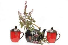 травяной чай бака Стоковая Фотография
