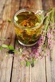 Травяной чай в прозрачной стеклянной кружке и травах леса Стоковые Изображения