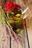 Травяной чай в прозрачной стеклянной кружке и травах леса Стоковое фото RF