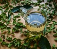 Травяной чай в стеклянной чашке Стоковые Фото