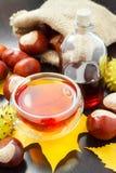 Травяной чай или тинктура каштанов и мешка с конским каштаном Стоковые Изображения