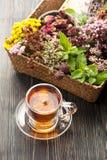 Травяной чай и различные травы Стоковая Фотография RF