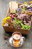 Травяной чай, мед и различные травы Стоковая Фотография RF