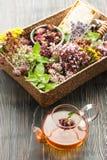 Травяной чай, мед и различные травы Стоковое Изображение