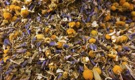 Травяной чай на белой предпосылке Стоковое Фото