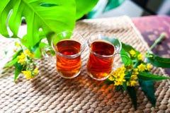 Травяной чай сделанный от wort ` s St. John, органический чай с травяным Hy Стоковые Фотографии RF