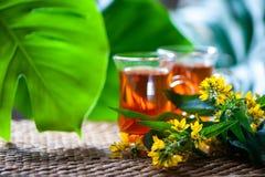 Травяной чай сделанный от wort ` s St. John, органический чай с травяным Hy Стоковое фото RF