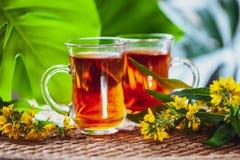 Травяной чай сделанный от wort ` s St. John, органический чай с травяным Hy Стоковые Изображения RF