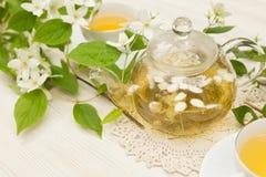 Травяной чай с жасмином стоковое фото