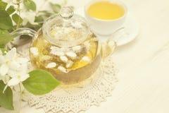 Травяной чай с жасмином стоковые фото